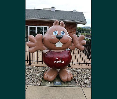 Home | The Punxsutawney Groundhog Club